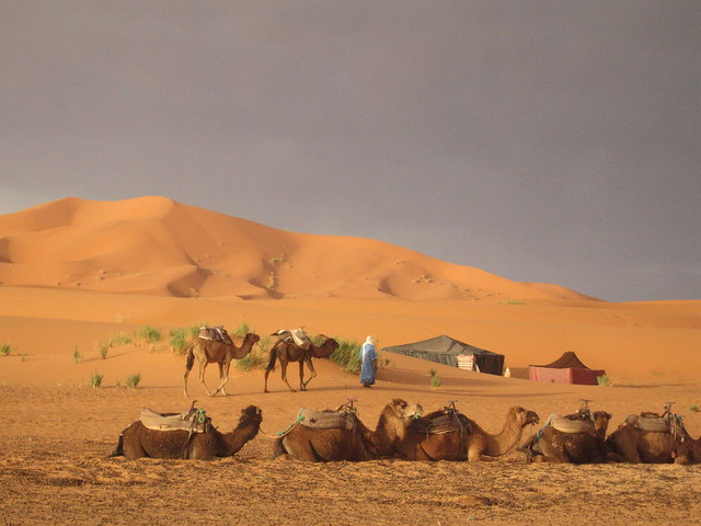 Early morning, Erg Chebbi