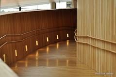 auditorium(0.0), conference hall(0.0), receptionist(0.0), stairs(0.0), floor(1.0), wood(1.0), interior design(1.0), wood flooring(1.0), hardwood(1.0), flooring(1.0),
