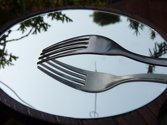 Fork Mirror Reflection