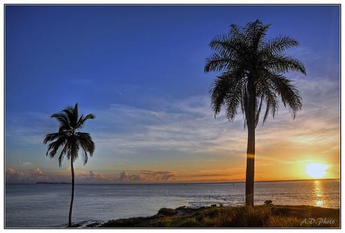 sea mer france tom sunrise de french soleil francaise dom guyana nuage plage hdr palmier roches kourou guyane levé guiana