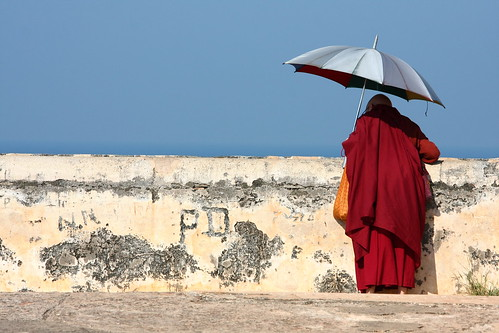 a French Buddhist nun who spent a couple of months in Galle for the climate (she needs it for a health condition)