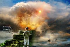 軍オタが魔法世界に転生したら、現代兵器で軍隊ハーレムを作っちゃいました!?