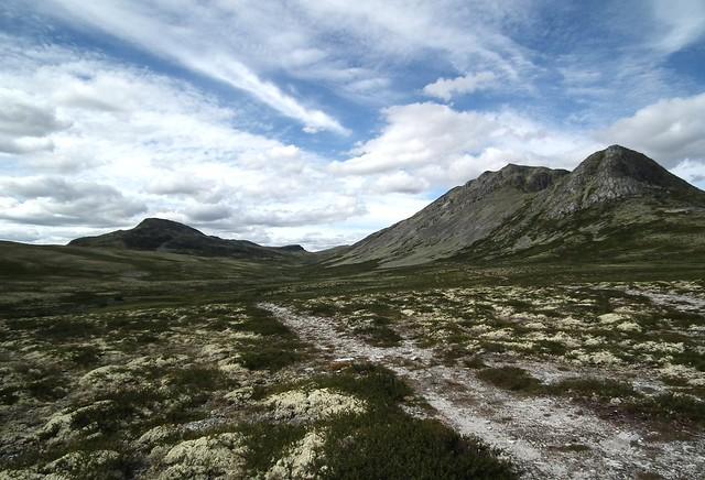 de bergen van Rondane NP