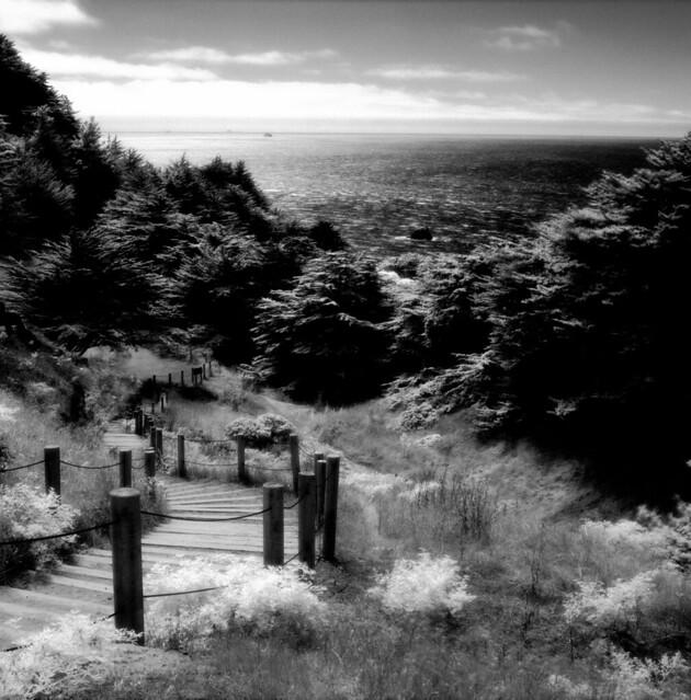 Land's End - San Francisco