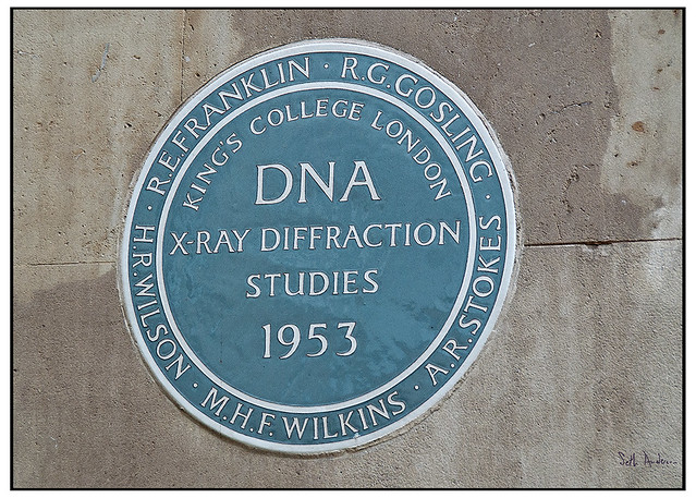 DNA X-Ray Diffraction Studies 1953