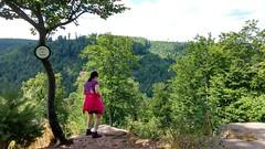 Rocher du Corbeau - La Petite-Pierre #VisitAlsace - Photo of Frohmuhl