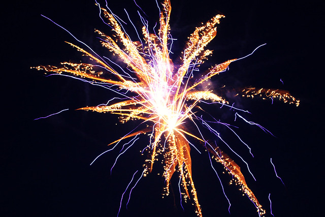 chinese firework industry case Chinese fireworks industry is a highly competitive industry, however, it still presents opportunities for investors based on the analysis of liuyang fireworks industry, the suggestion for jerry yu is to take the opportunities-to invest in liuyang fireworks industry.