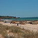 Small photo of Alvor
