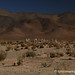 A Cemetery Against the Hills - Northwestern Argentina