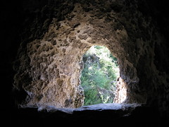 pit cave(0.0), lava tube(0.0), sea cave(0.0), formation(1.0), cave(1.0), caving(1.0), darkness(1.0),