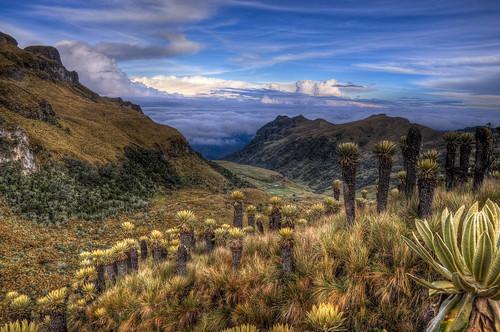 nikon colombia hdr d90 nikond90 parquenacionallosnevados coffeetriangle