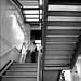 students on open stairway at Harvard University