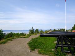 Men hva sikter kanonene mot? (0429)
