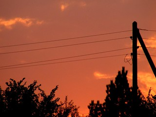 electricity board, sunset