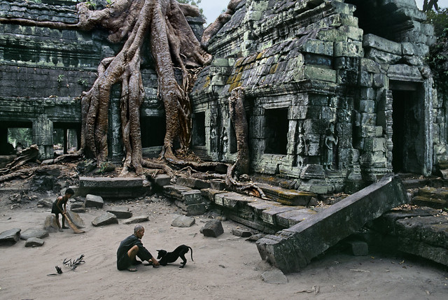 Caretaker of Ta Prohm Wat, a 2.5-acre temple housed within a walled, 12th-century 148-acre complex, Angkor, Cambodia, 1999, by Steve McCurry