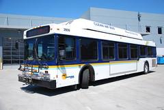 Santa Cruz Metro 2809