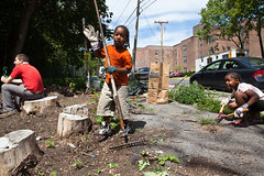 GSCA Vacant Lot Project (CR Permaculture Guild) - Albany, NY - 10, Jul - 13 by sebastien.barre