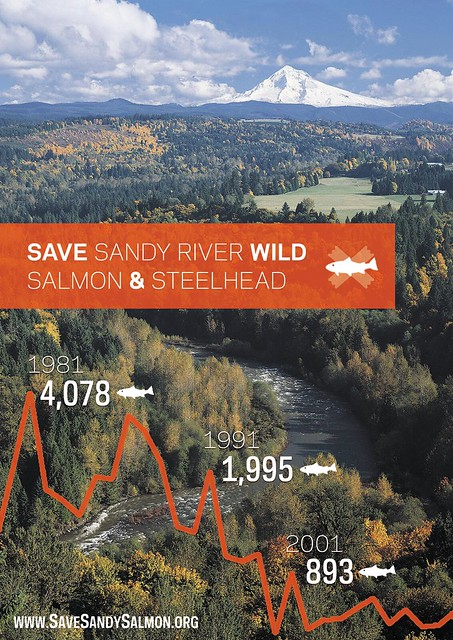 Save Sandy Salmon Postcard - Front