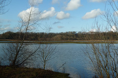 Brockholes Wetland