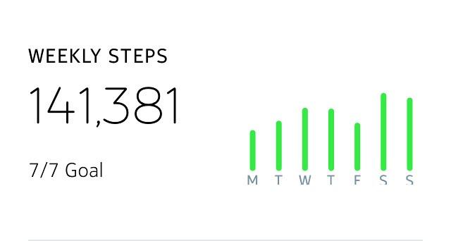 141,381 Steps