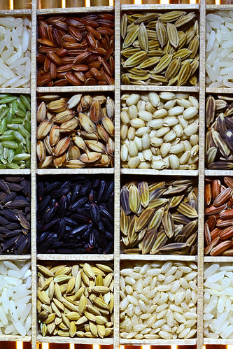More than 113,000 rice varieties are stored in the IRG