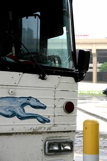 Grayhound bus close up