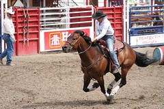 animal sports, rodeo, western riding, event, equestrian sport, sports, charreada, reining, barrel racing,
