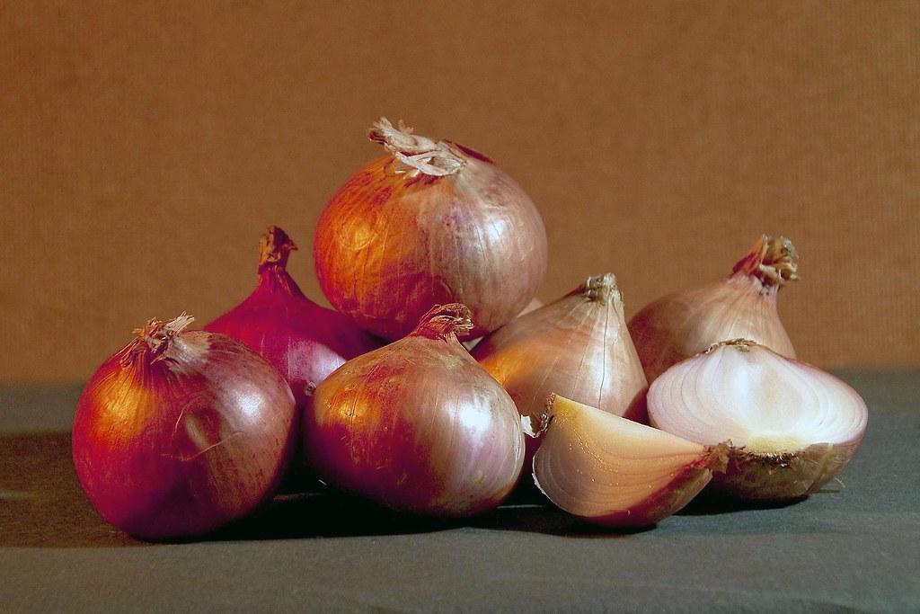 Still Life - Onions