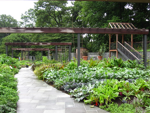 A Short History of Herb Garden Design - Brooklyn Botanic Garden