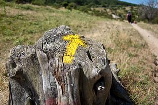 Camino de Santiago: Manzanares el Real - Cercedilla