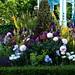 The Victorian Aviary Garden-CFS