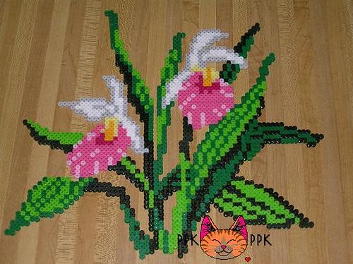 PPK - MN State Flower