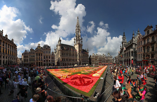 Biggest carpet flower in the world, Brussels, Belgium