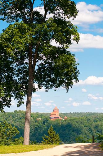 tree castle view latvia sigulda turaida