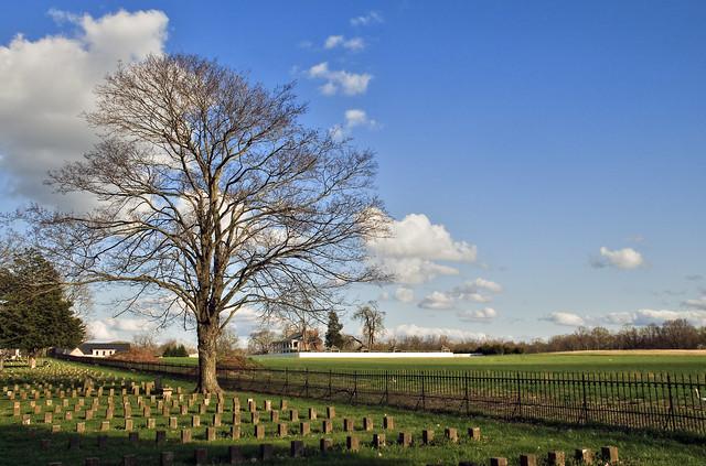 McGavock CSA Cemetery