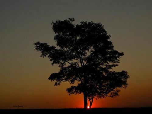 nascer do sol hoje...26-08-2010