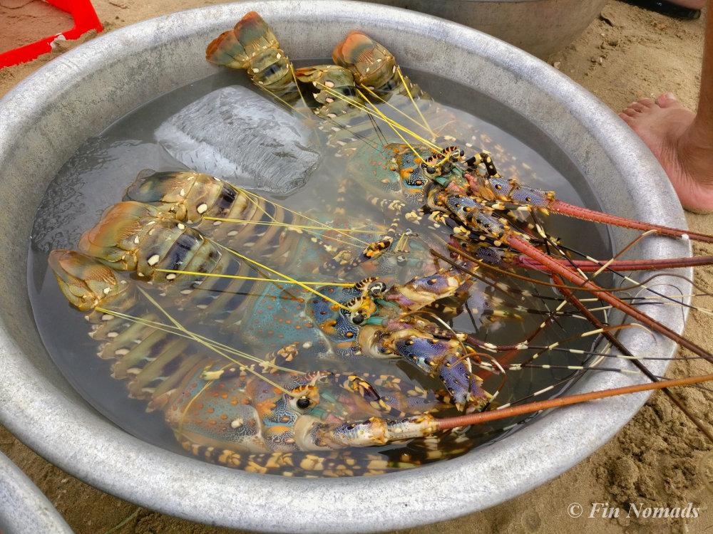 crab-fishing-village-muine