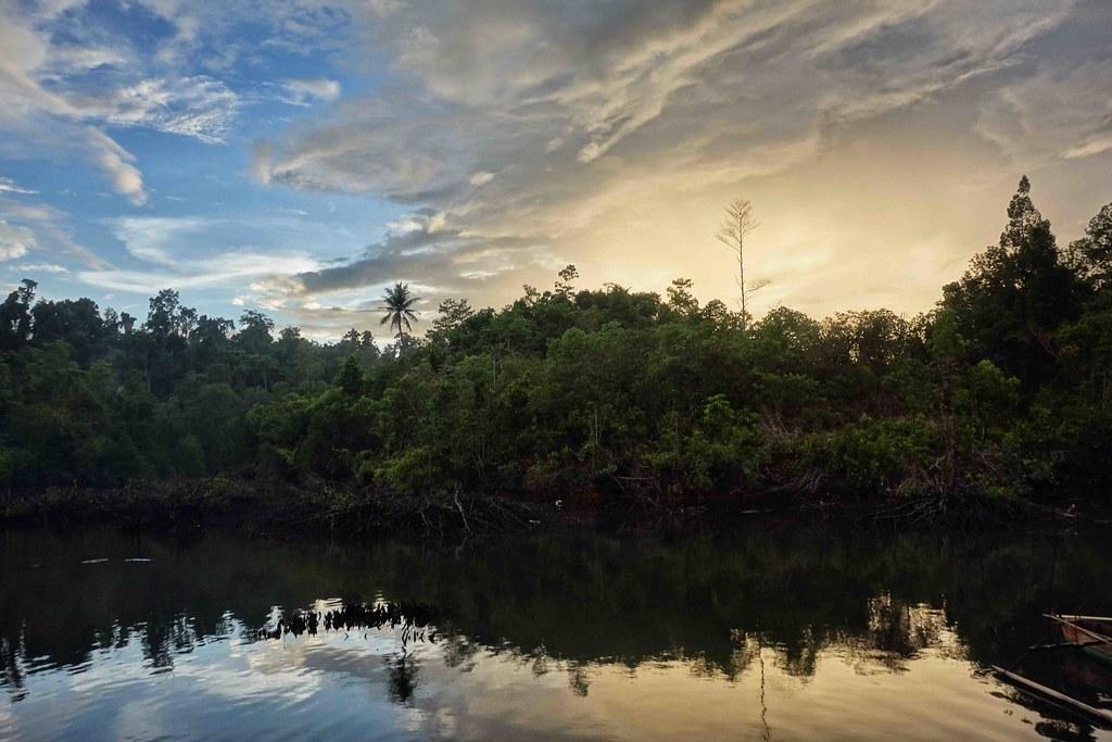 Togian - Tumbalawa - Mangrove - Sunset