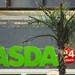 Asda Brighton Marina 24 Hours and Fake Palm Tree