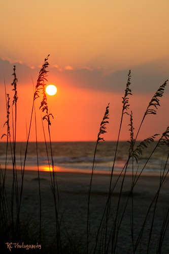 ocean morning sky sun beach nature sunrise canon sand waves seaoats southcarolinacoast litchfieldbythesea