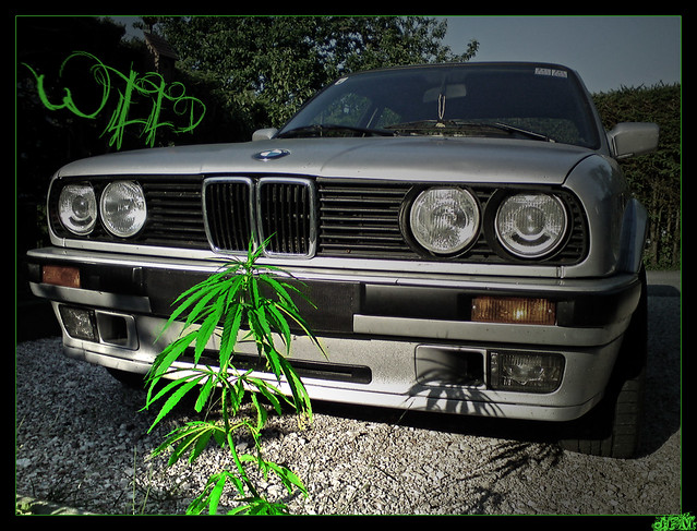 Bmw Vs Weed Flickr Photo Sharing