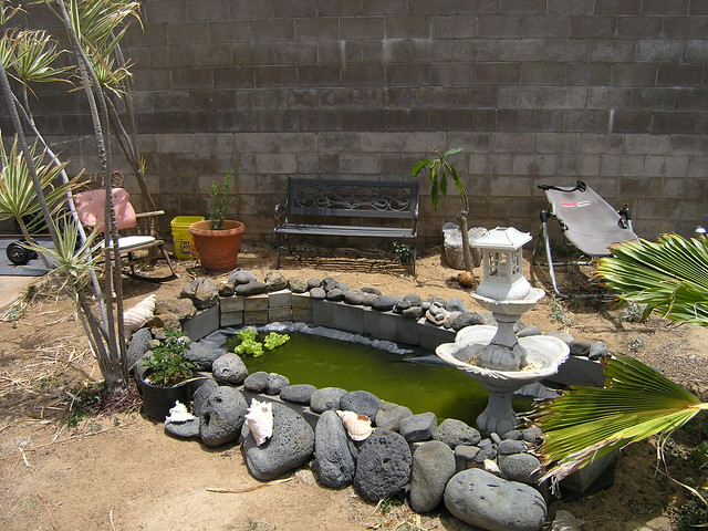 918_H_Backyard_Turtle_Pond | Flickr - Photo Sharing!