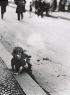 A child playing in the gutter-Berlin 1920