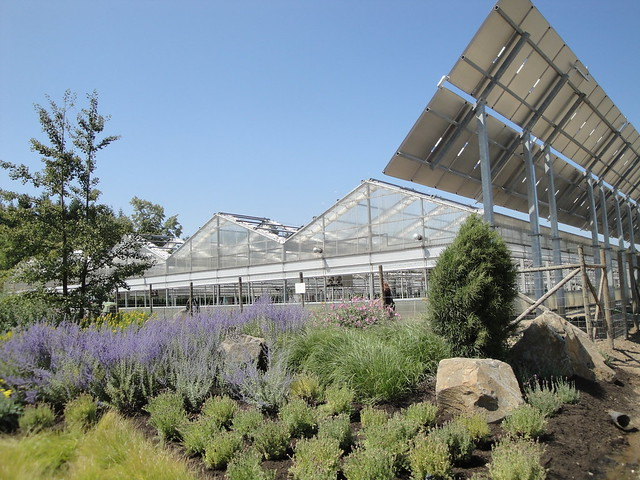 Blooming Greenhouses with Solar Panels | Flickr - Photo Sharing!