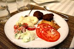 german dinner plate #2