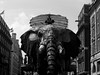 2006-05-07 - United Kingdom - England - London - The Sultan's Elephant - Black and White by CGP Grey