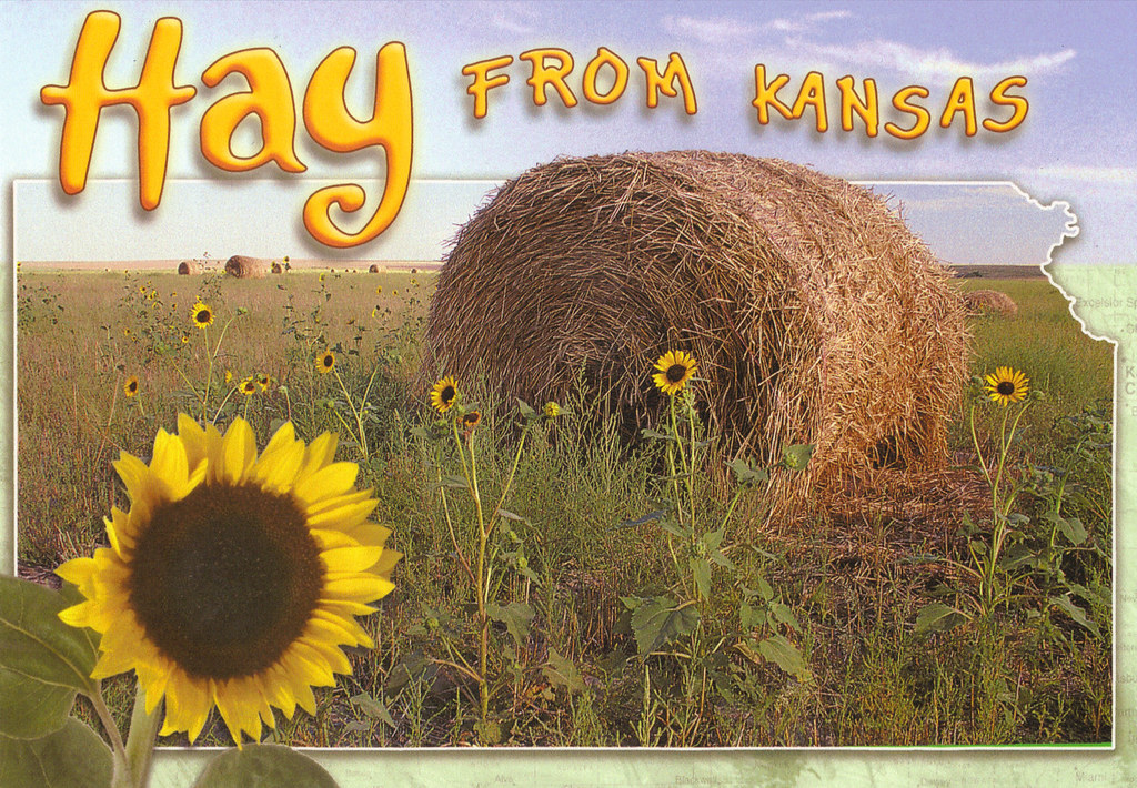 Kansas Hay Bale State Map Postcard | Swap from ThatG… | Flickr on friend kansas map, iowa kansas map, wichita kansas map, google kansas map, zip code kansas map, downtown kansas city map, old kansas city map, cartoon kansas map, vintage kansas map,