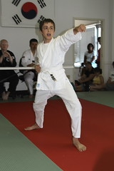 judo(0.0), hapkido(1.0), individual sports(1.0), contact sport(1.0), sports(1.0), tang soo do(1.0), combat sport(1.0), martial arts(1.0), karate(1.0), taekkyeon(1.0), japanese martial arts(1.0),