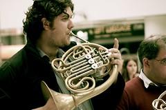music, horn, brass instrument, wind instrument,