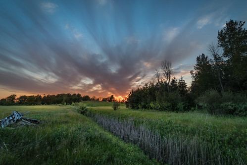 canoneos5dmarkiv ditch sunset sundown evening atardecer cattails pallets hill wideangle michigan midland mi rokinon 14mm canon